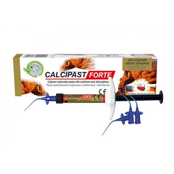 CALCIPAST FORTE  Syringe 2.1g